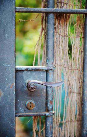 wicket door: Antique wicket door in vintage style to garden