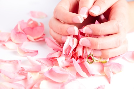 Beautiful hands with french manicure holding rose petals