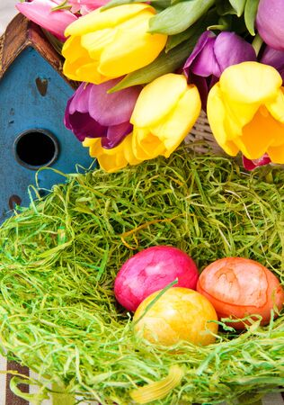 Colorful eggs in a nest with tulips