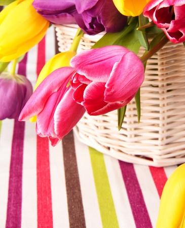 Vielzahl von bunten Tulpen in einem Korb