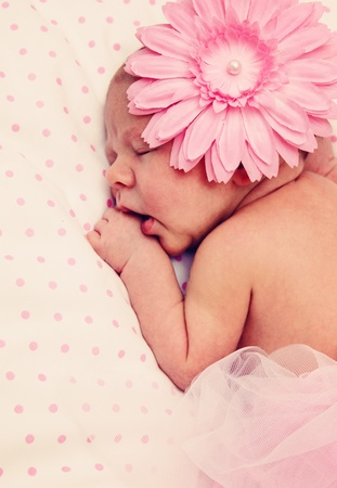 Adorable, sweet ballerina with fluffy pink skirt and flower Stock Photo