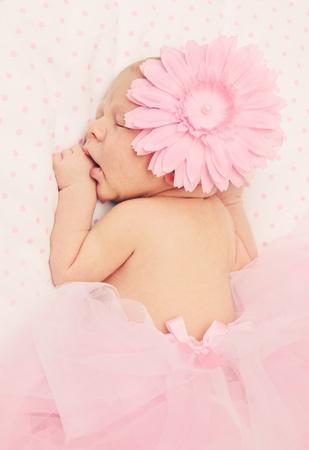 cintillos: Bailarina adorable, dulce, suave y esponjosa con falda de color rosa y la flor Foto de archivo