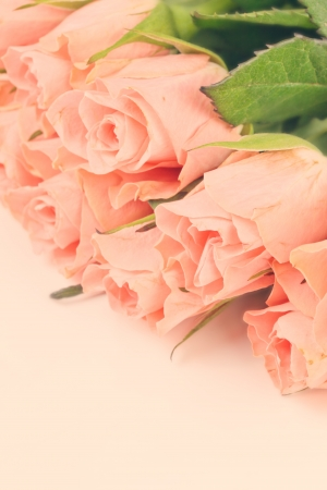 Bouquet of pink roses in vintage style, flowers border photo