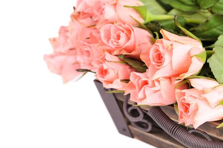Bouquet of pink roses isolated on white background, flowers border photo