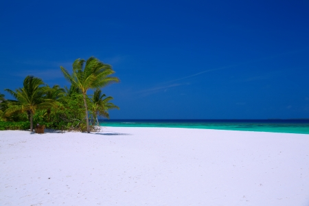 Beautiful scenery of white sandy beach, turquoise water, blue sky and coco palm trees at Maldives