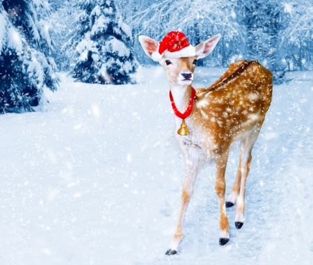 Christmas white-tailed, baby deer with Santa Hat in the winter forest with snow fall  Christmas card   photo