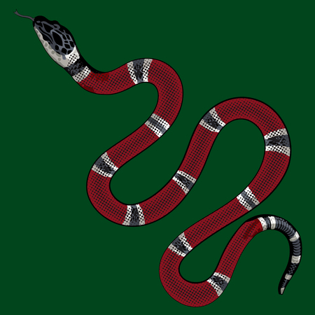 red snake vector. Sticker and hand drawn snake for tattoo.  イラスト・ベクター素材