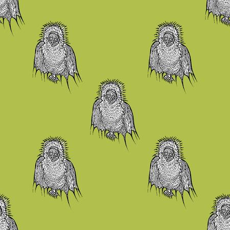strange: Strange birds on a yellow background. Illustration