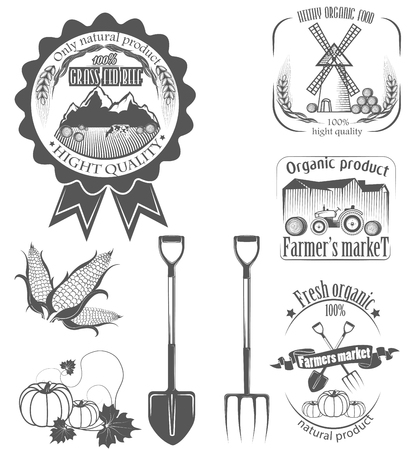 A set of logos,labels, stamps, badges for organic food. Vector illustration of Healthy food. collection of symbols for farm, ranch Logo