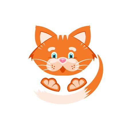 Vector illustration. Orange cat. White background.