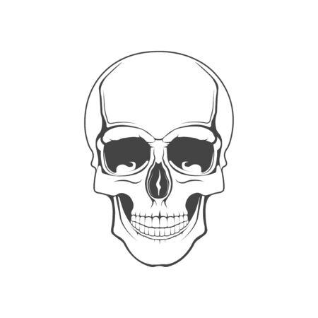 Vector graphic concept. Human skull. Symbol emblem, element, print.