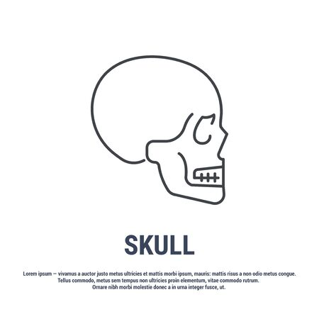 Vector icon. Line design. Human skull. Medicine and anatomy. Anatomical structure of man. Symbol, element, sign, emblem. Concept illustration.