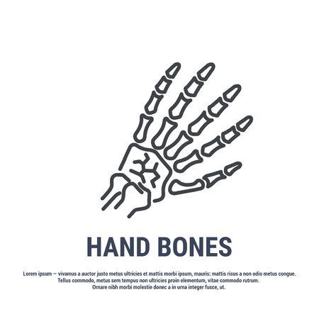 Vector icon. Line design. Skeleton hand. Medicine and anatomy. Anatomical structure of man. Symbol, element, sign,  emblem. Concept illustration. 矢量图像