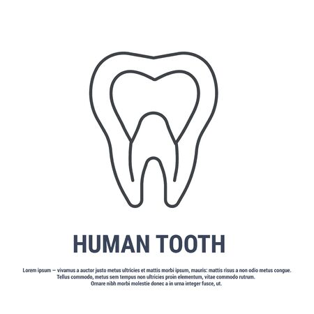 Vector icon. Line design. Tooth and dental nerve. Medicine and anatomy. Anatomical structure of man. Symbol, element, sign,  emblem. Concept illustration.