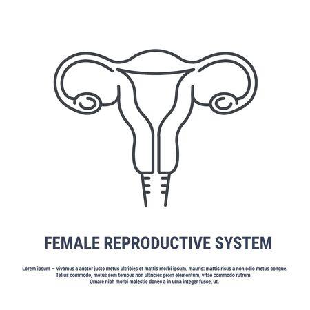 Vector icon. Line design. Female reproductive organ, uterus, ovaries. Anatomical structure of man. Disease and treatment. Symbol, element, sign, emblem. Concept illustration. Illustration