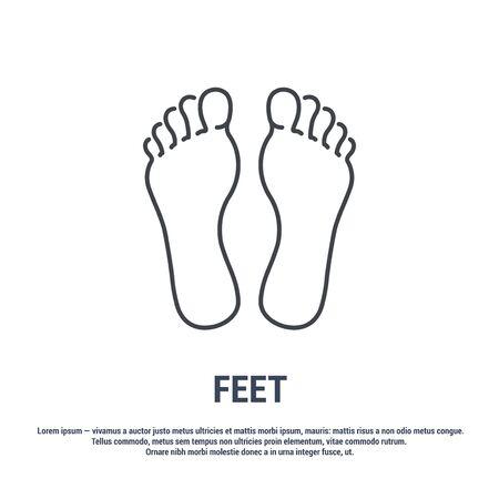 Vector icon. Line design. Feet. Medicine and anatomy. Anatomical structure of man. Symbol, element, sign, emblem. Concept illustration.