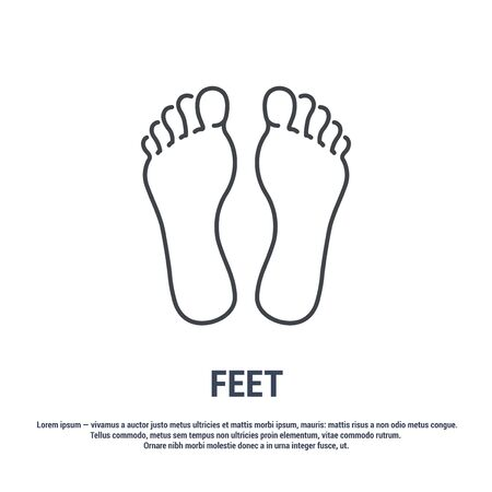 Vector icon. Line design. Feet. Medicine and anatomy. Anatomical structure of man. Symbol, element, sign, emblem. Concept illustration. 写真素材 - 130092257