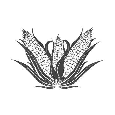 Vector organic food. Ð¡orn, cob, popcorn. Grain agriculture. Concept of quality healthy food. Natural eco nutrition. Farm products shop. Vettoriali