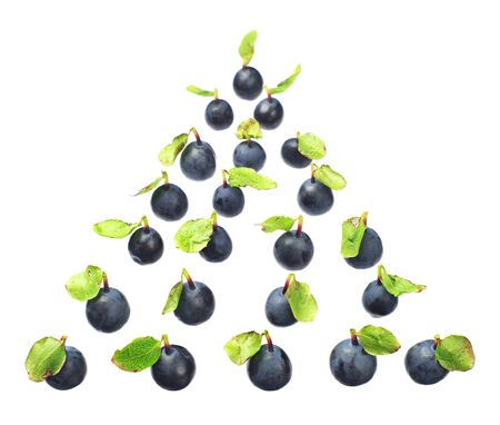 heal new year: Blueberries, located in the form of fir-tree