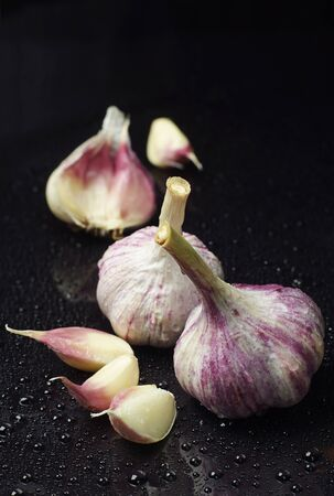 Garlic with water drops on black Stock Photo