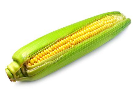 Raw corn on white background