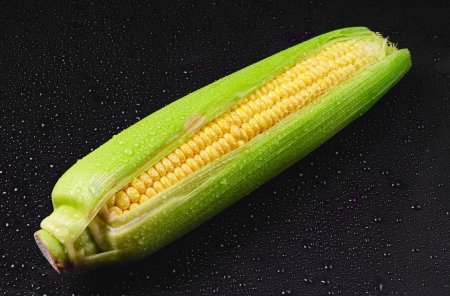 Fresh corn with water drops on black