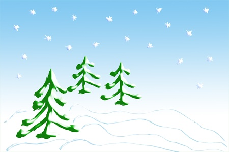 firtrees: Background for a Christmas card with fir-trees