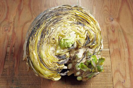 spoilt: Rotten cabbage on the wooden table
