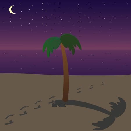 springbreak: Night beach with palm and foot trails Illustration