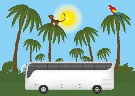 jungle safari: Touristic bus in jungle safari