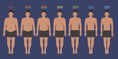 proportions of man: Stages of man slim with fat percent Illustration