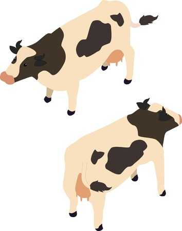 black and white: Isometric black and white cow