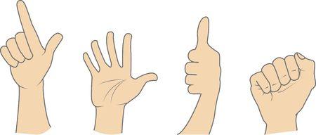 dedo meÑique: Conjunto de diversas muestras de la mano realista