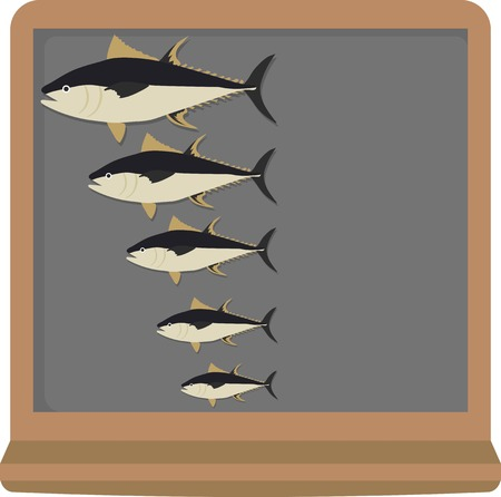 frozen fish: Fish sizes from big to small on blackboard