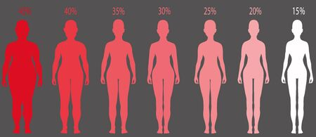 Women silhouettes with different obesity degrees. Ilustrace