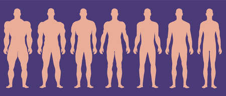 Man silhouettes with different muscle degrees.