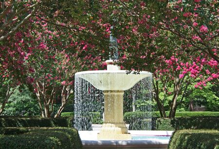 water fountain surrounded by flowers photo