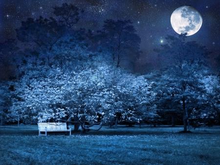 luz de luna: Escena surrealista de la noche de luna llena en el Parque