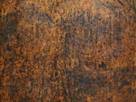 surface aged: Old leather texture