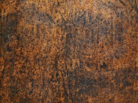 old macro: Textura de cuero viejo Foto de archivo