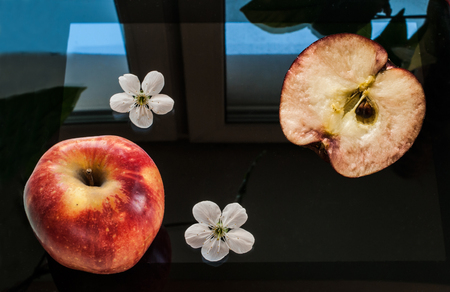 A red apple, a half of an apple and two apple flowers lay on a black, switched off screen of a tablet. A window and a green plant reflect on a smooth surface of the screen. The photo could be good for a background.