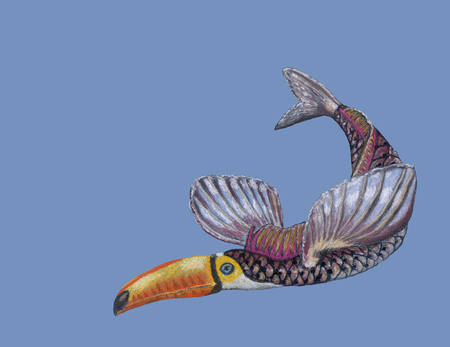A fantastic animal (toucan and fish) hand drawn by soft pastel. The creature has a head of a toucan and a body of a fish and painted on the blue background. Stock Photo