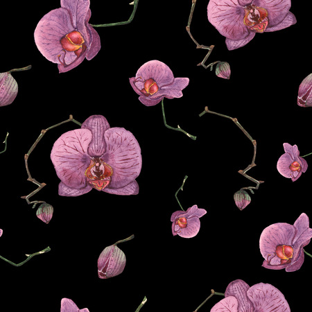 Seamless pattern of hand drawn watercolor purple orchids. Painted isolated branches with flowers and buds on the black background. Vintage botanical illustration of Phalaenopsis tropical plant. For card, banner, print, design.