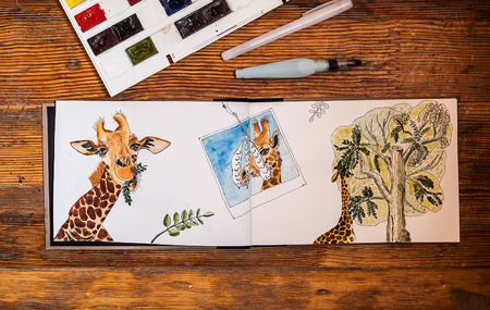 Closeup of watercolor giraffe, eating leaves from acacia tree, hand drawn in sketchbook. Sketchbook, watercolor, liner and brush are on wooden table with copy space. Concept - art is hobby. Standard-Bild
