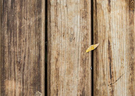 Brown wooden floor with small yellow leaf lying on it.  Abstract background with copy space. Concept - autumn comes.