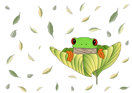 Beautiful red-eyed green tree frog with orange feet and toes sits and looks out on a big leaf. Flying green and yellow leaves are on the background.