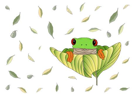 Schöner rotäugiger grüner Laubfrosch mit orangefarbenen Füßen und Zehen sitzt und schaut auf ein großes Blatt. Fliegende grüne und gelbe Blätter sind auf dem Hintergrund.