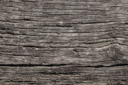Old wood bench structre. Grey wrinkled hardwood surface, closeup. Abstract natural background. Standard-Bild