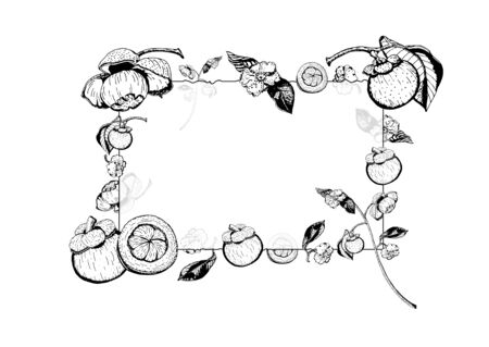 Vector illustration of transparent glass frame with purple mangosteen fruits, flowers, leaves.  Garcinia Mangostana, hand drawn in black and white.