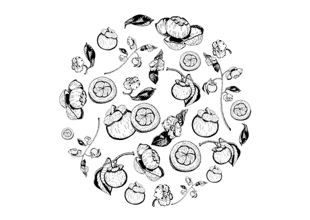 Purple mangosteen fruits, flowers, and leaves items composed in circle shape on white background. Tasty sweet garcinia mangostana hand drawn in black and white.